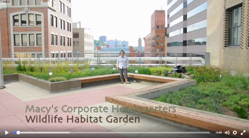 Macy's Corporate Headquarters Wildlife Habitat Garden